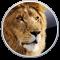 Mac OS X 10.7 Support (Lion)
